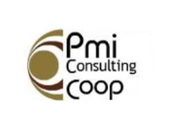 PMI Consulting Coop